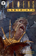 Aliens Labyrinth Vol 1 3