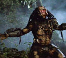 Jungle Hunter (Predator)