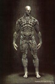 Biomechanikus ruha