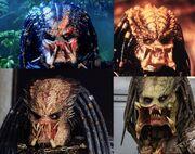 Predator1 fej