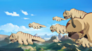 Flying bison in Northen air temple
