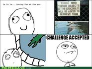 Crocodile Challenge Accepted