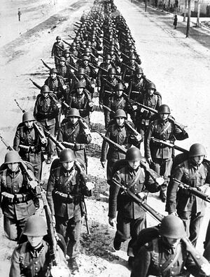 Polish army, marching