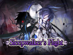 Sleep walker's flight pic