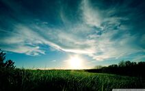 Sunny day summer-wallpaper-960x600
