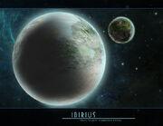 Ibirius