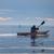 Kayaking4fun