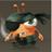 -Galaxy Life Ninja-'s avatar