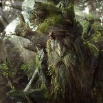 TreebeardOfFangorn