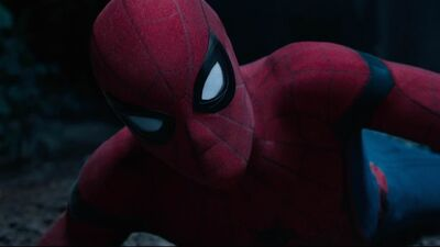 Tom Holland Confirms Spider-Man for 'Avengers: Infinity War'