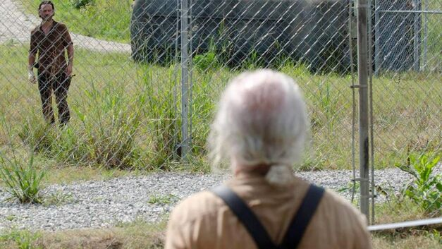 hershel greene the walking dead