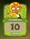 Common Boomerang Thrower