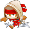 300-NinjaMonkey