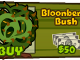 Bloonberry Bush