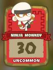 Uncommon Ninja Monkey