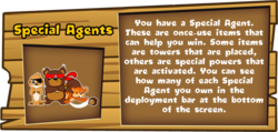 Special Agent Description