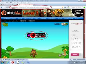 Bug no Site do jogo