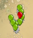 PricklyBloons