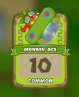 Common Monkey Ace