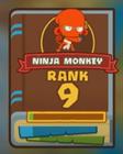 Rank 9 Ninja Book