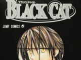 Black Cat Art Book Collection