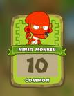 Common Ninja Monkey
