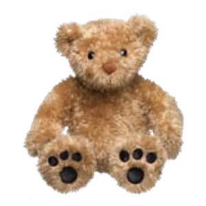 Curly bear II