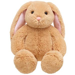 Lil bunny big ears