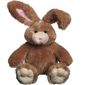 Mocha bunny sitting