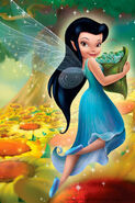 Disney-Fairies-disney-fairies-9998096-320-480