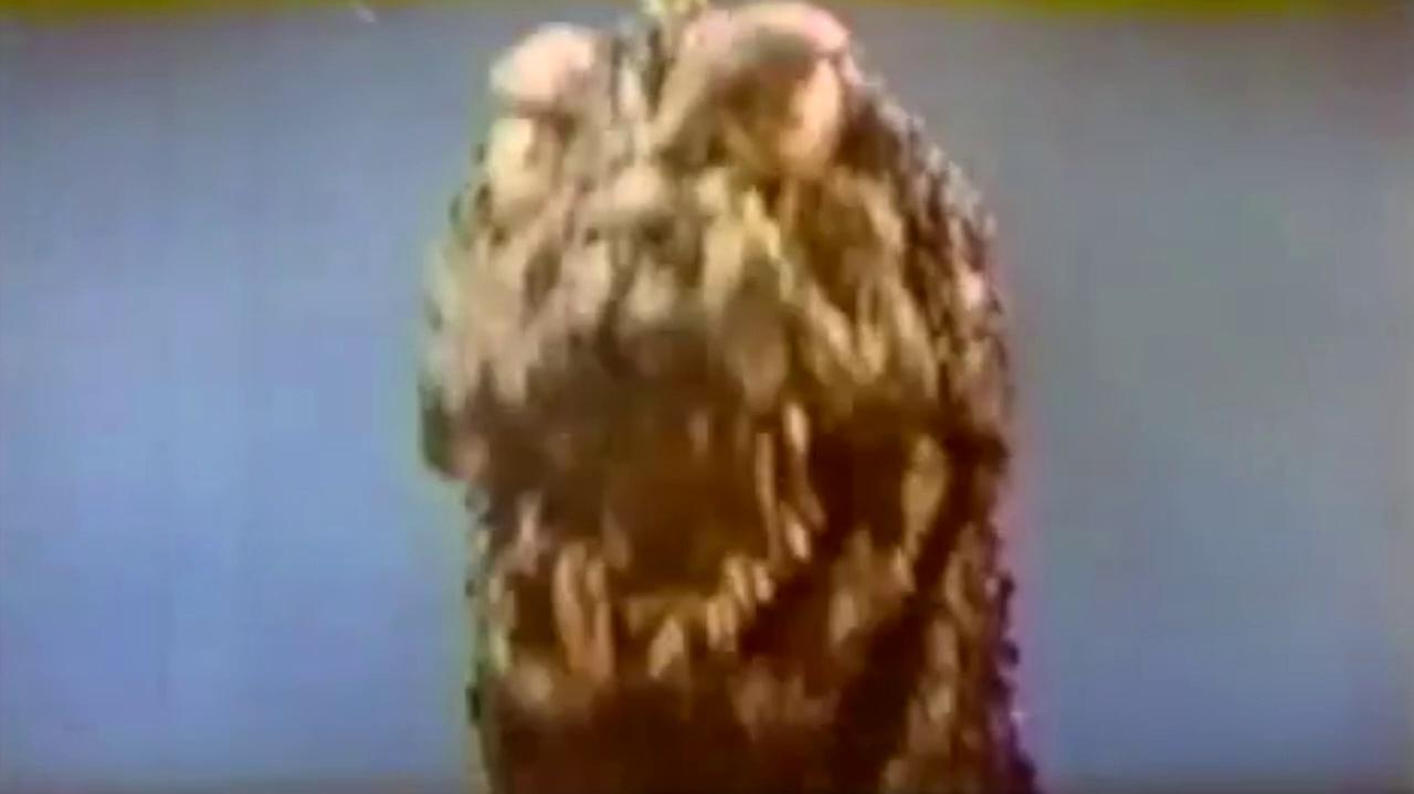 Ghidorah, The 3-Headed Monster Trailer