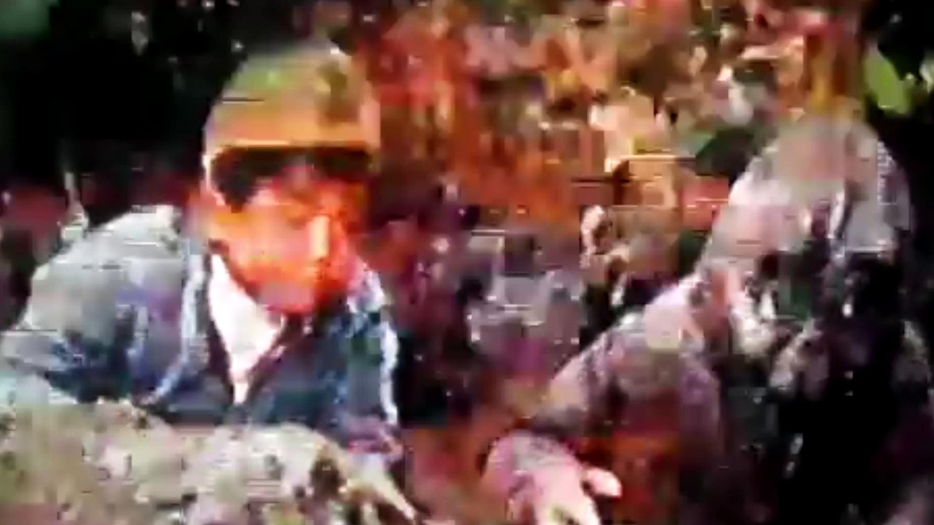Godzilla's Revenge Sitcom Part 3