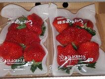 Strawberry-15451270396734349121122812491941