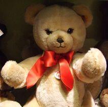 Teddy karate