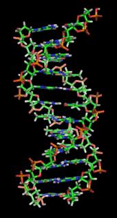 170px-DNA orbit animated static thumb