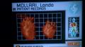 Centauri hearts.png