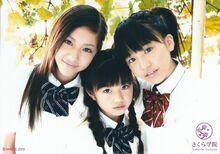 Yui 3
