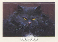 Boo Boo cat from 1990 calendar stickers
