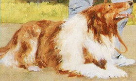 Louie Thomas Kristys dog from book 11