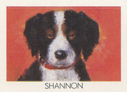 Shannon from 1990 calendar stickers