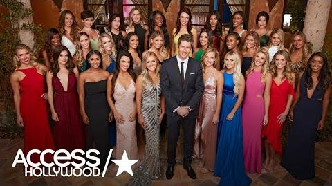'The Bachelor' Season 22 Meet The 29 Women Competing For Arie Luyendyk Jr.'s Heart