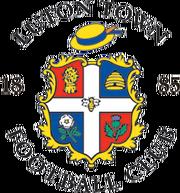 Luton fc logo