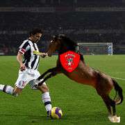 Delpiero-horse