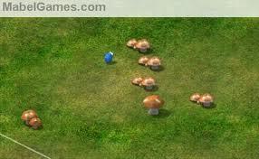 Plenty-o-muushrooms