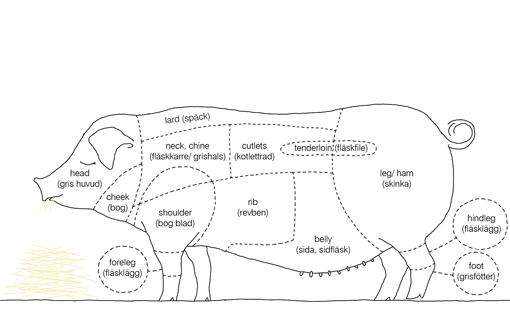 Pork Cuts Chart Erkalnathandedecker