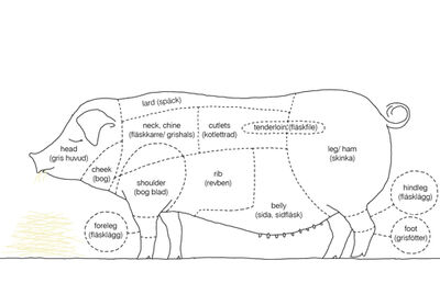 Cuts-of-bacon diagram