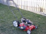 A Picture of a Lawnmower