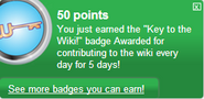 Key to the Wiki! (earned)