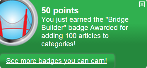 Ficheiro:Bridge Builder (earned).png