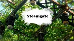 Steamgate